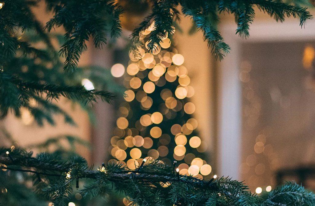 3 astuces pour conserver son sapin de Noël le plus longtemps possible