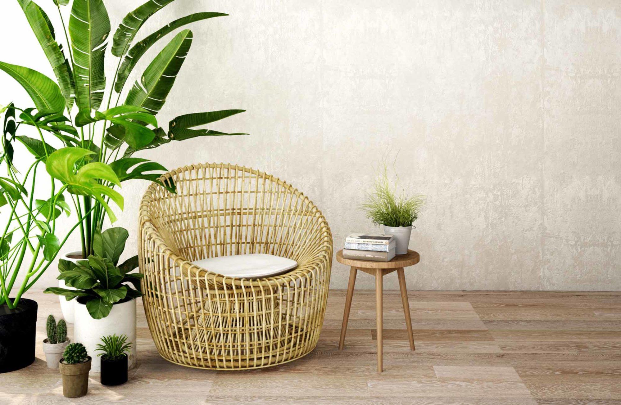 Coin salon avec fauteuil en bambou et bananier