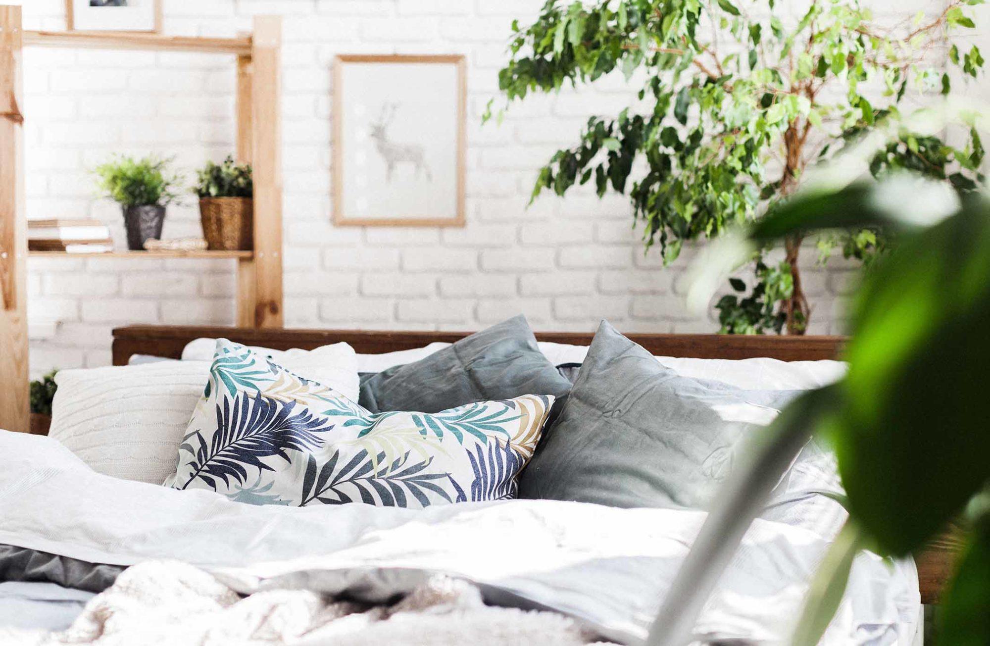 Chambre cosy avec plantes
