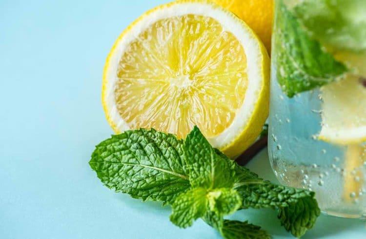 Citron, menthe et verre d'eau