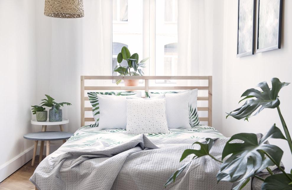 Chambre moderne et ensoleillée avec des plantes