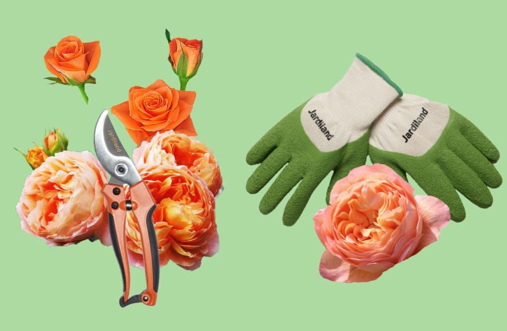 Printemps au jardin : 20 défis pour remettre les mains dans la terre !