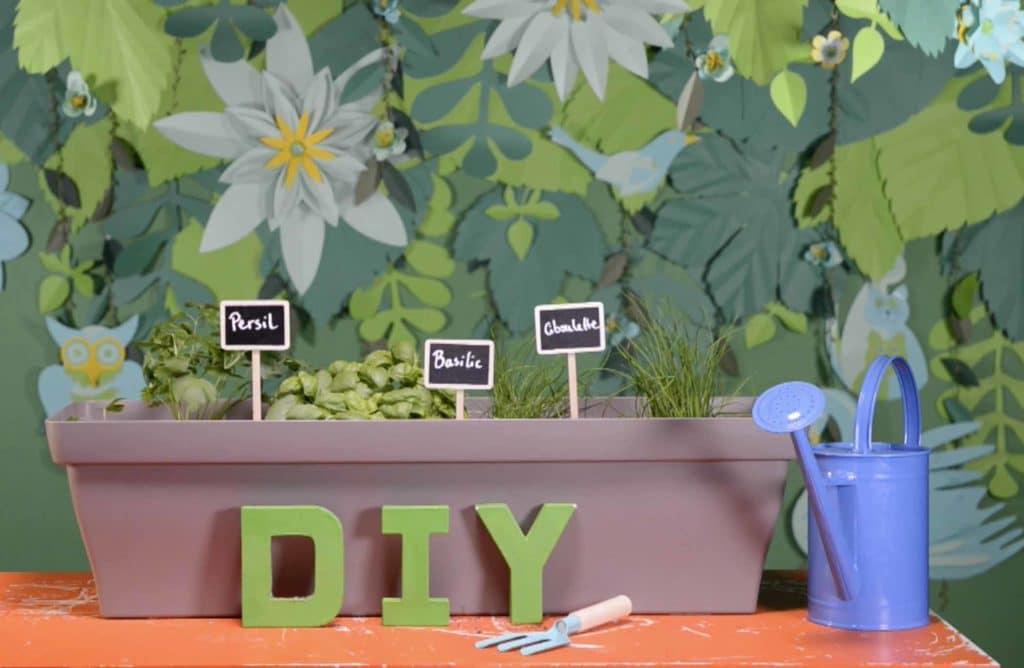 #DIY : Créer une jardinière d'aromatiques