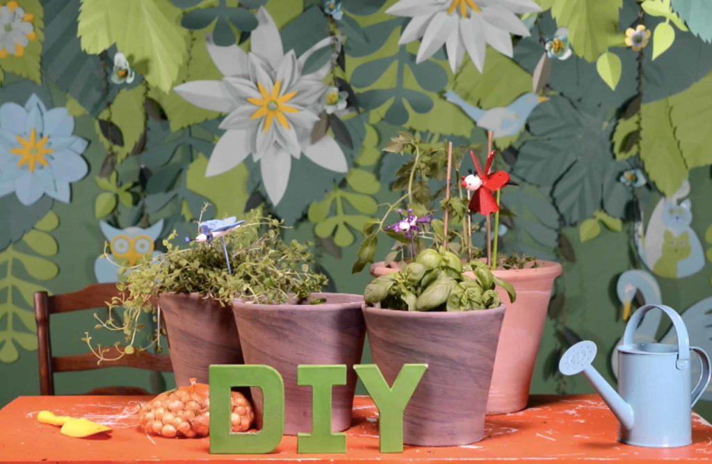 #DIY : Créer un potager à sauce tomate