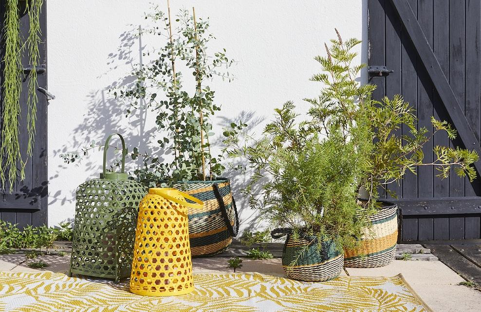 Photophores colorés pour terrasse