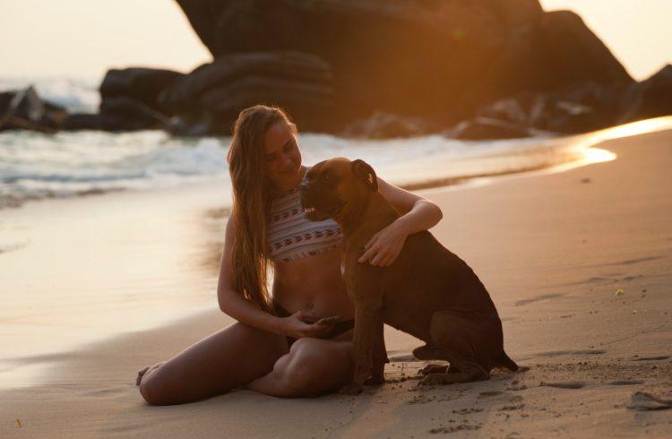 Chien et sa maitresse à la plage
