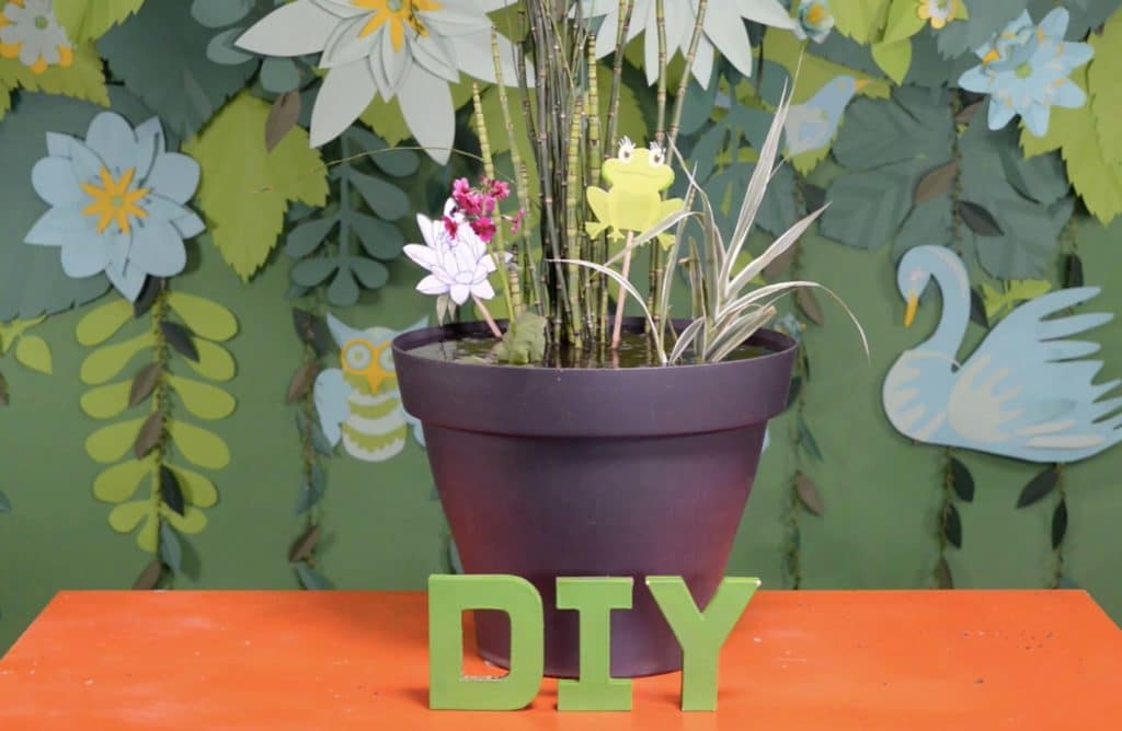 #DIY : Comment créer un jardin aquatique sur un balcon ?