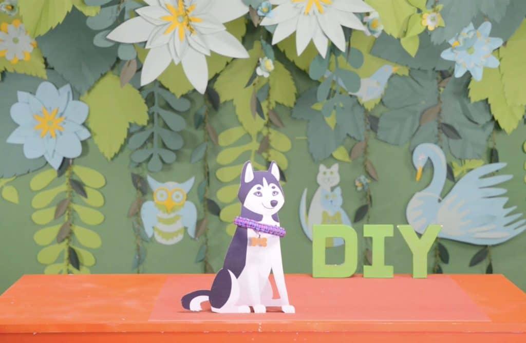 #DIY : Comment réaliser un collier tressé pour chien ?