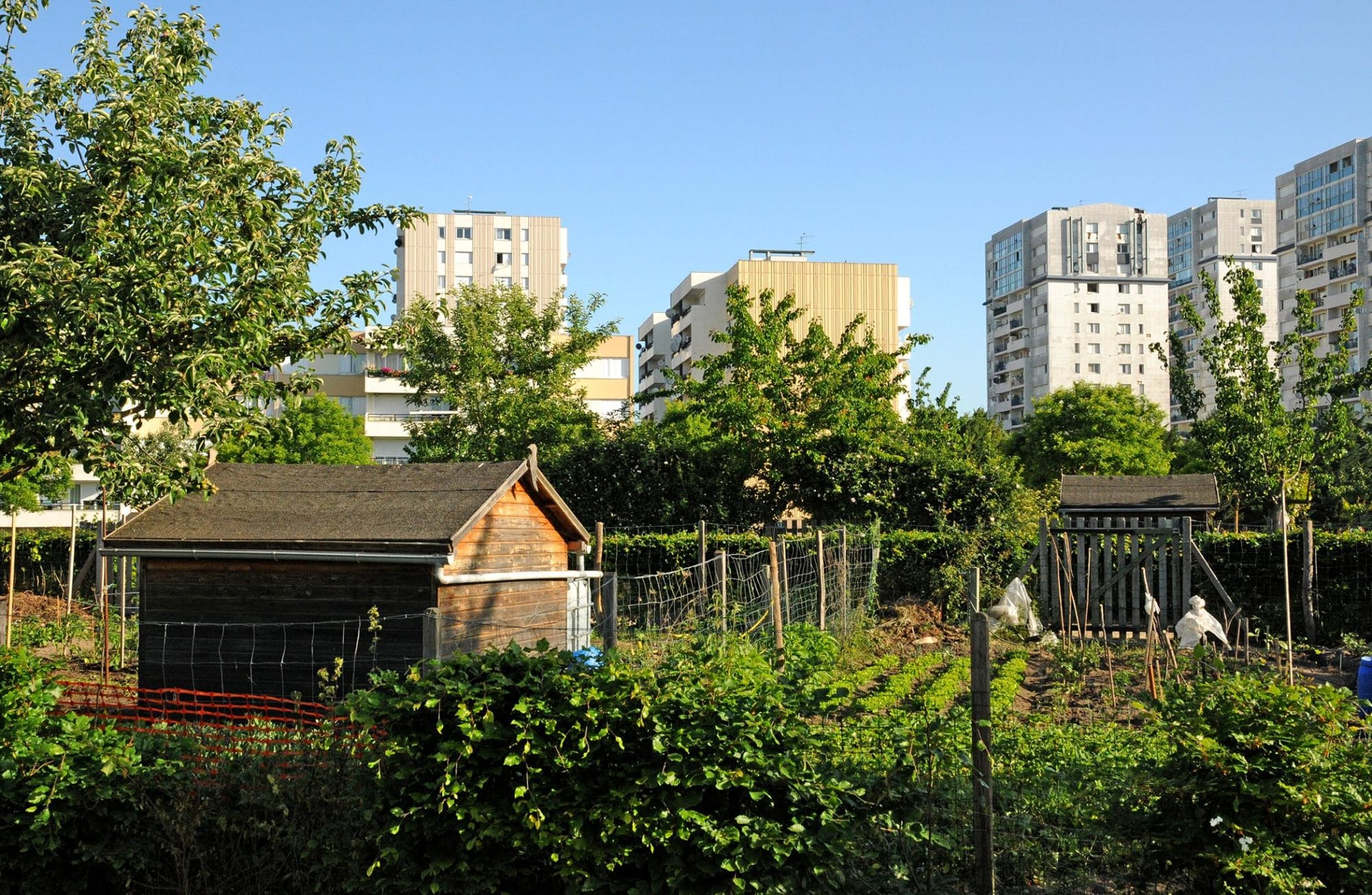Après le potager de ville, découvrez la ferme urbaine !