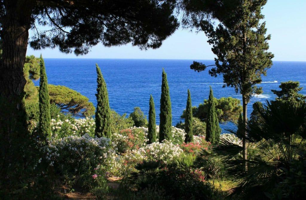 5 conseils pour créer un jardin méditerranéen