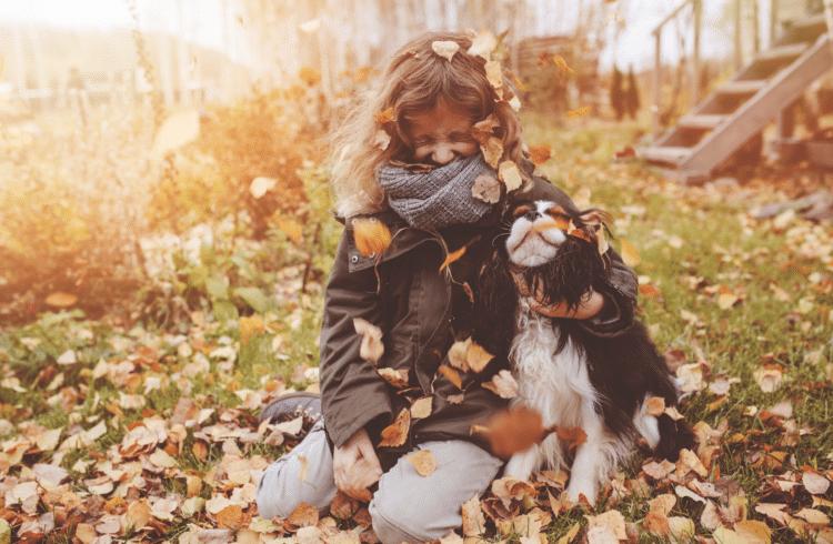 Un chien qui joue dans les feuilles