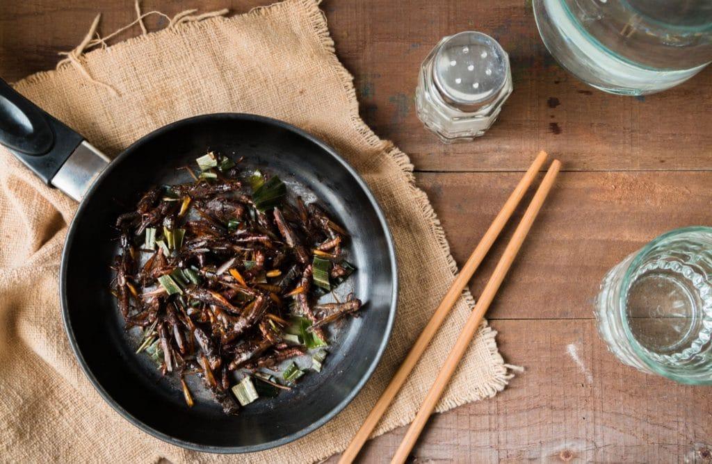 5 bonnes raisons d'intégrer les insectes à votre alimentation