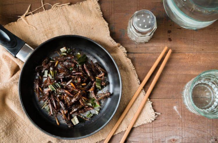 Des insectes dans vos assiettes