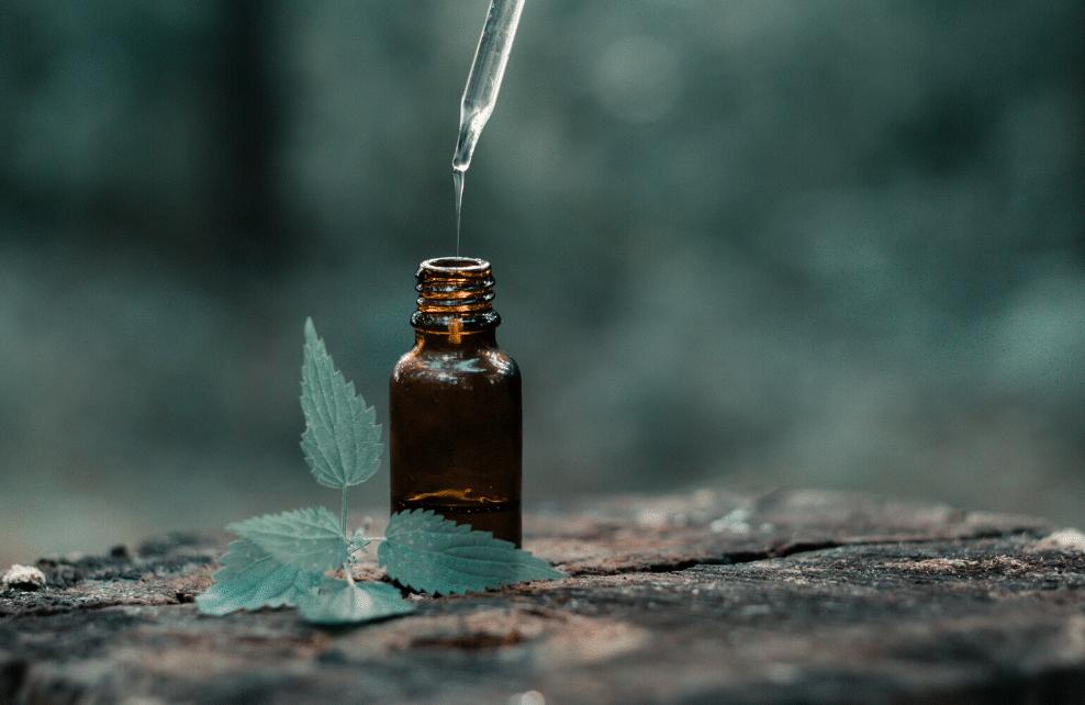 L'huile essentielle de menthe poivrée bio, pour les Fêtes de fin d'année