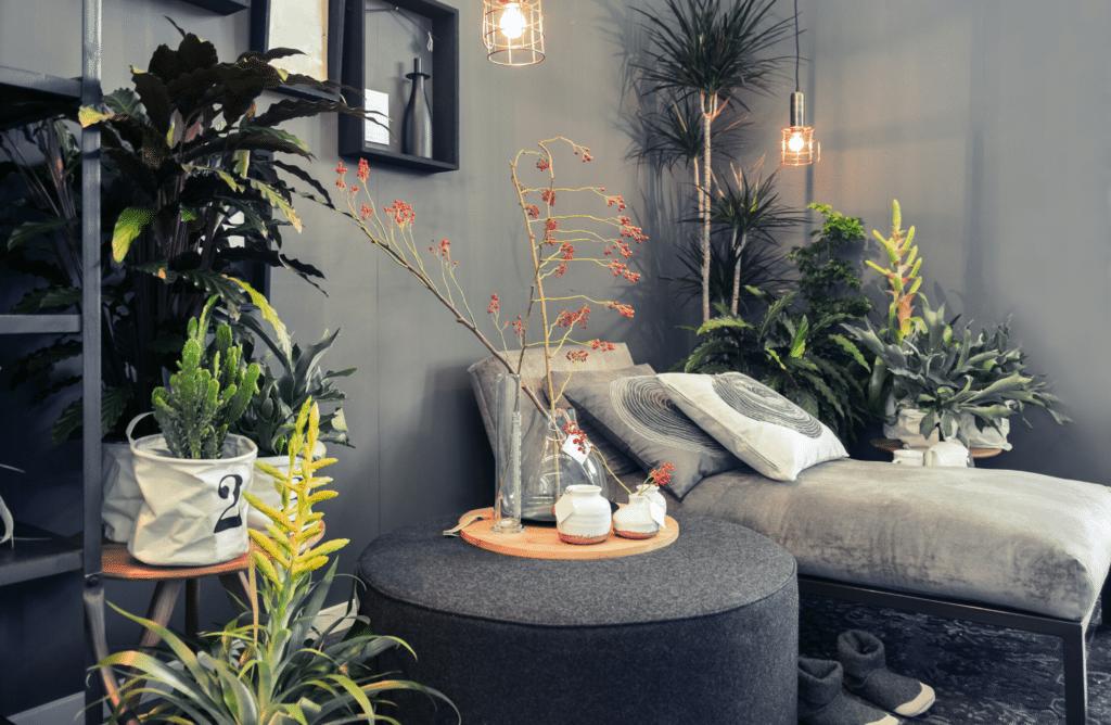 5 idées pour aménager sa véranda en jardin d'hiver