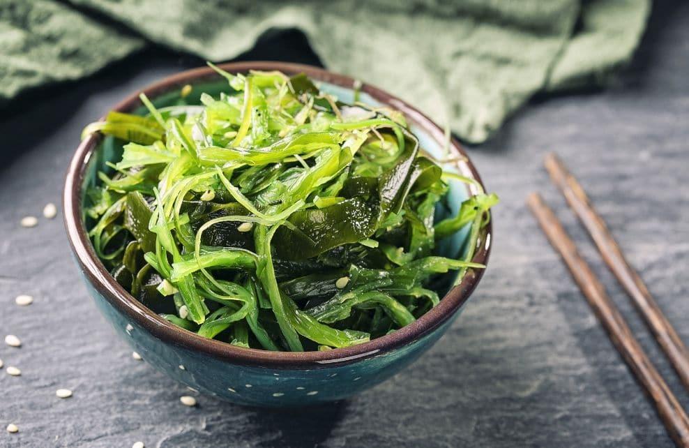 Les algues sous toutes leurs formes