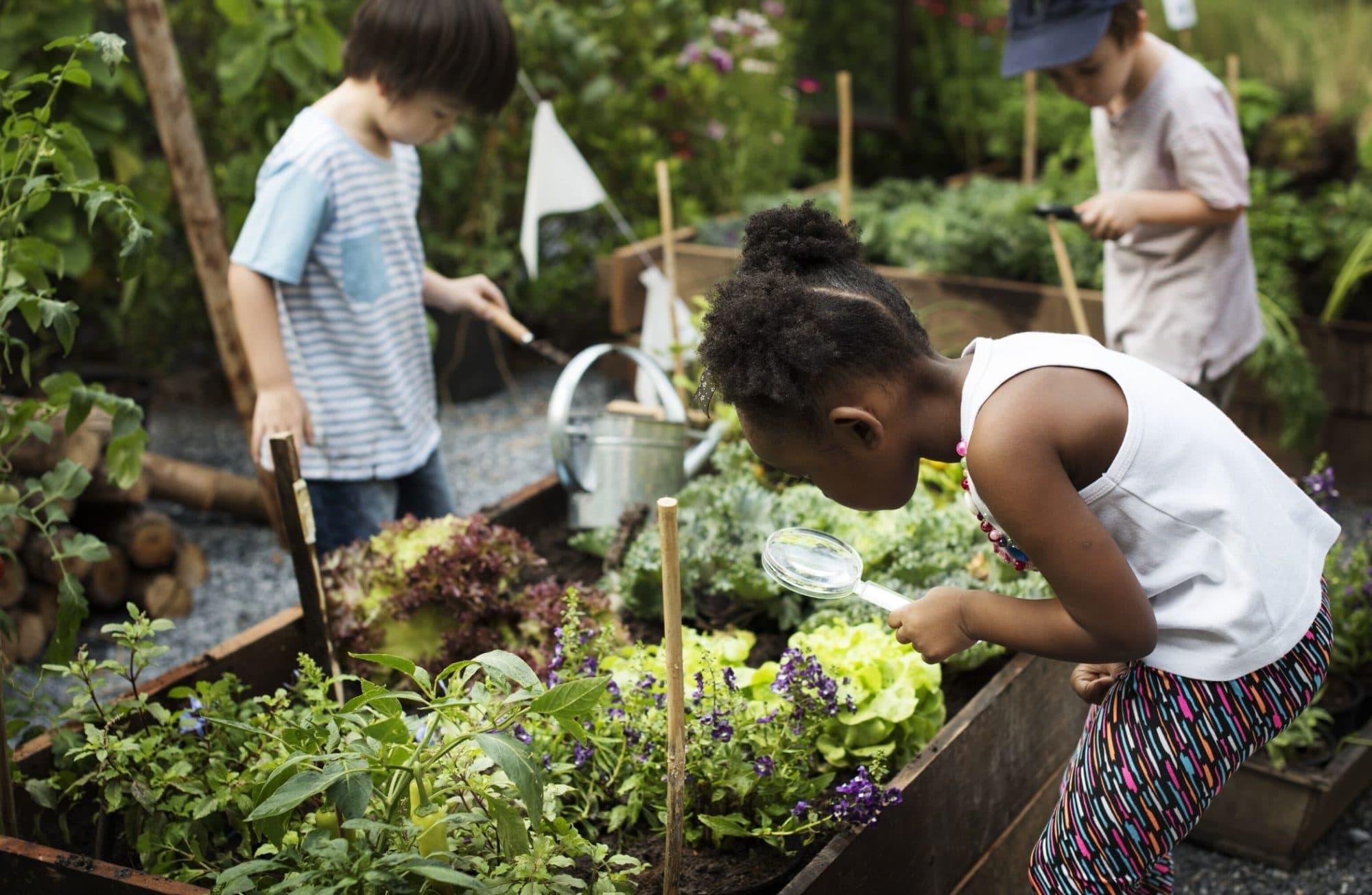 Comment faire de son potager un terrain de jeu pour les enfants ?