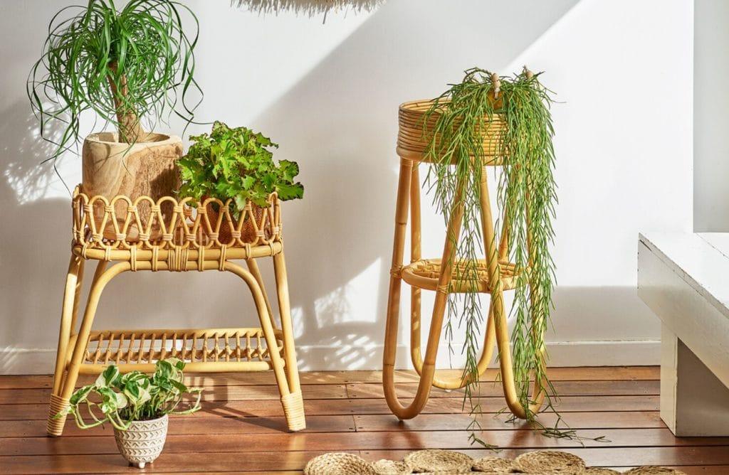 6 conseils pour créer son jardin d'intérieur