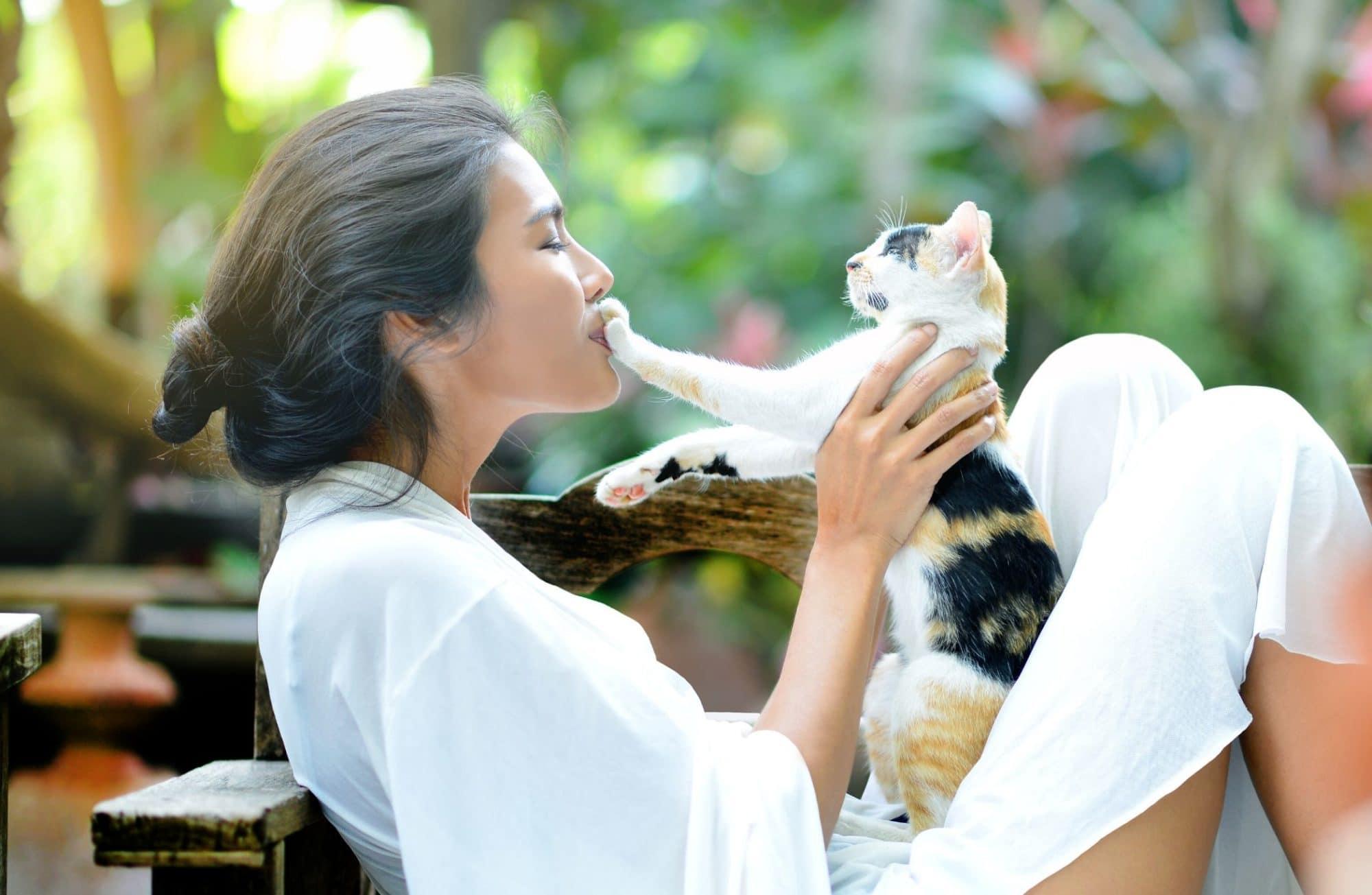 Décrypter le langage de votre chat : mode d'emploi
