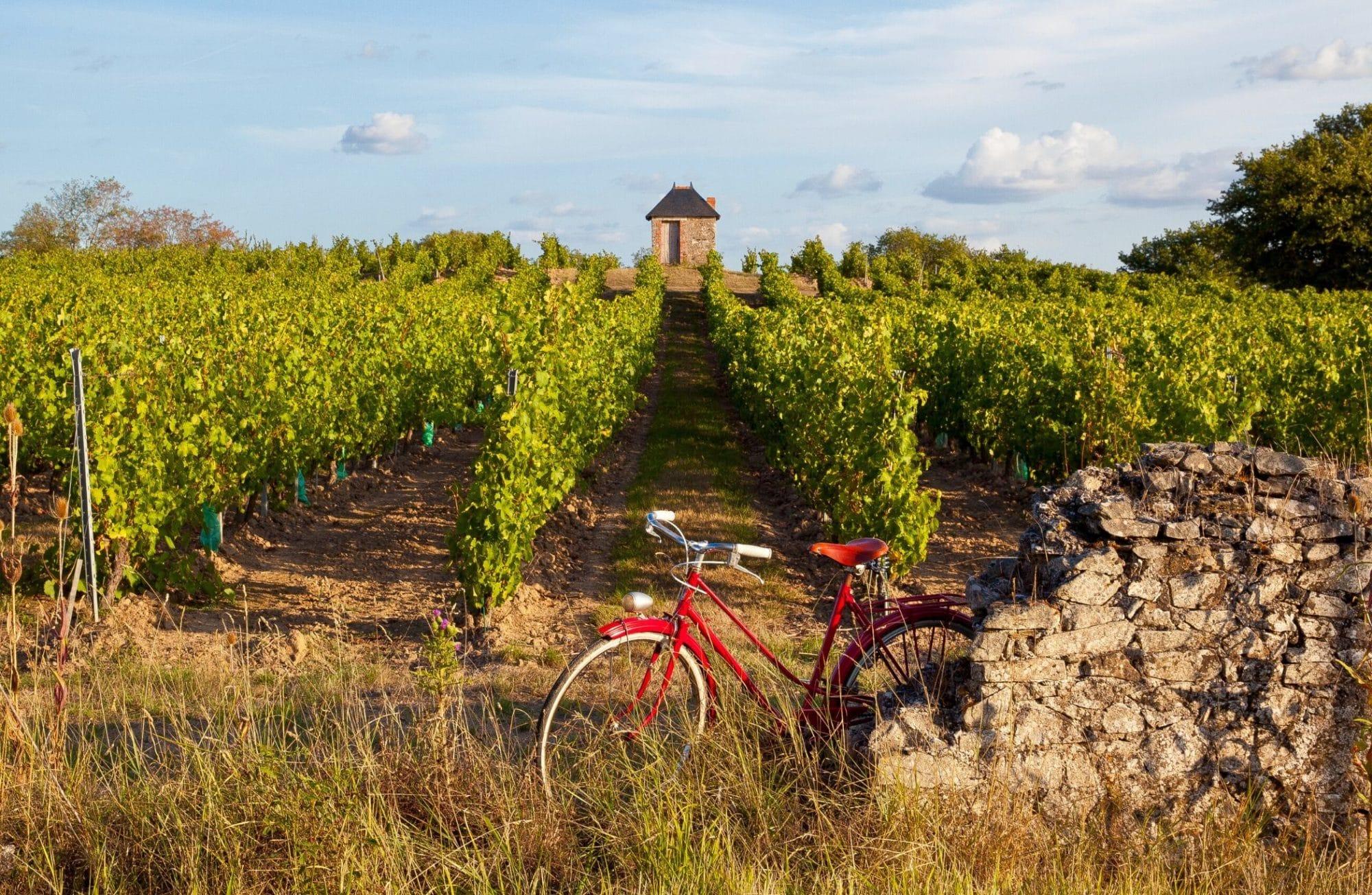 5 itinéraires pour visiter la France à vélo cet été