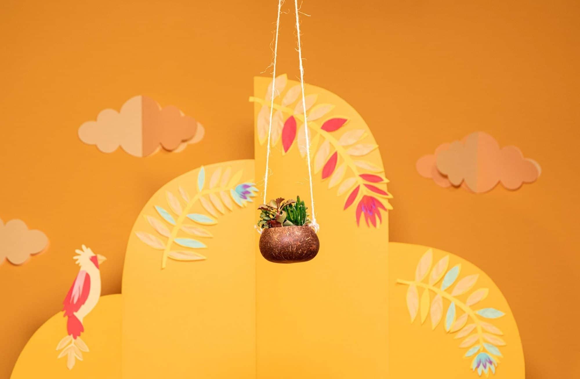 Fabriquer un pot suspendu avec une noix de coco