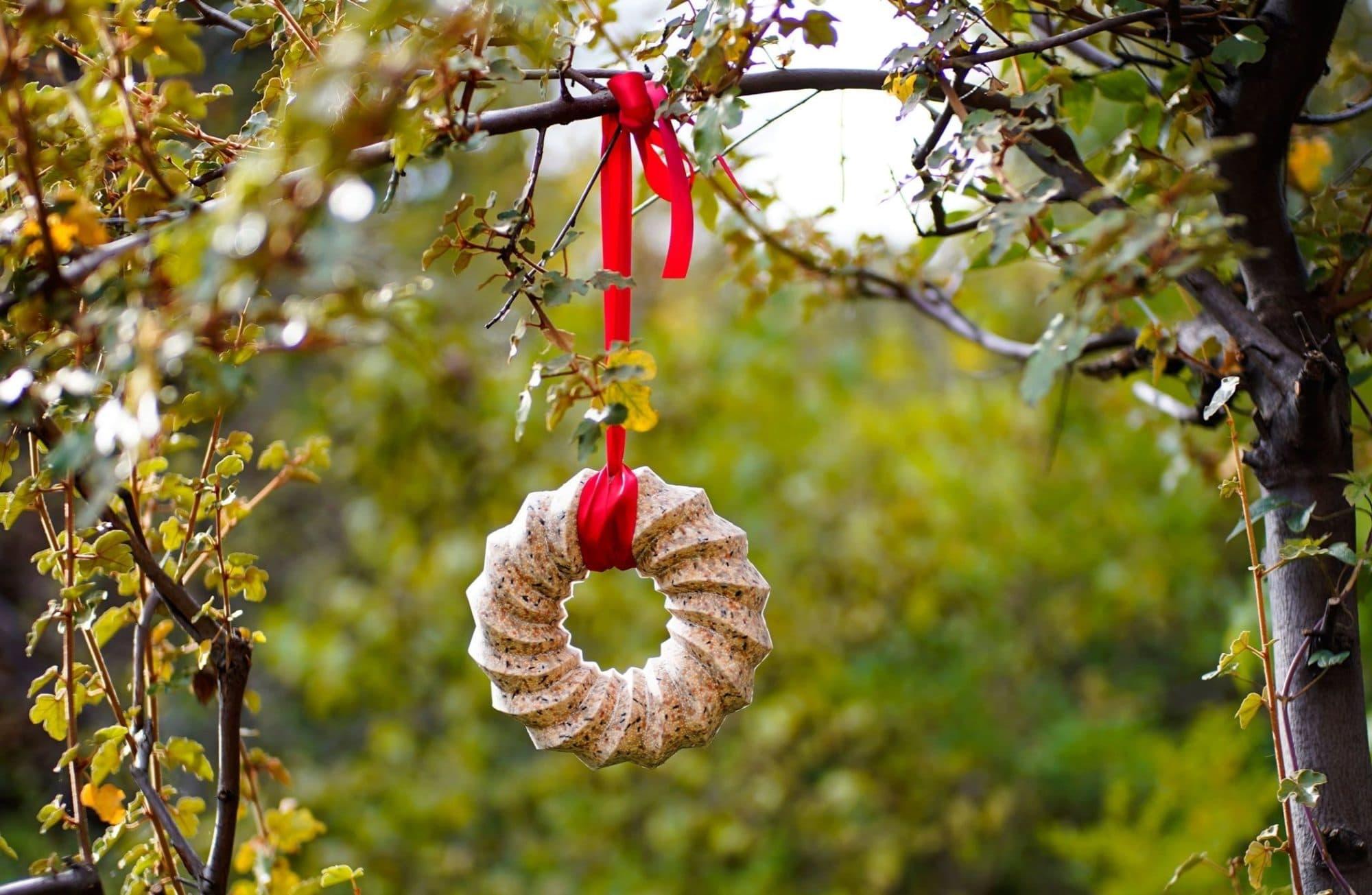 Comment réaliser une couronne de Noël pour oiseaux ?