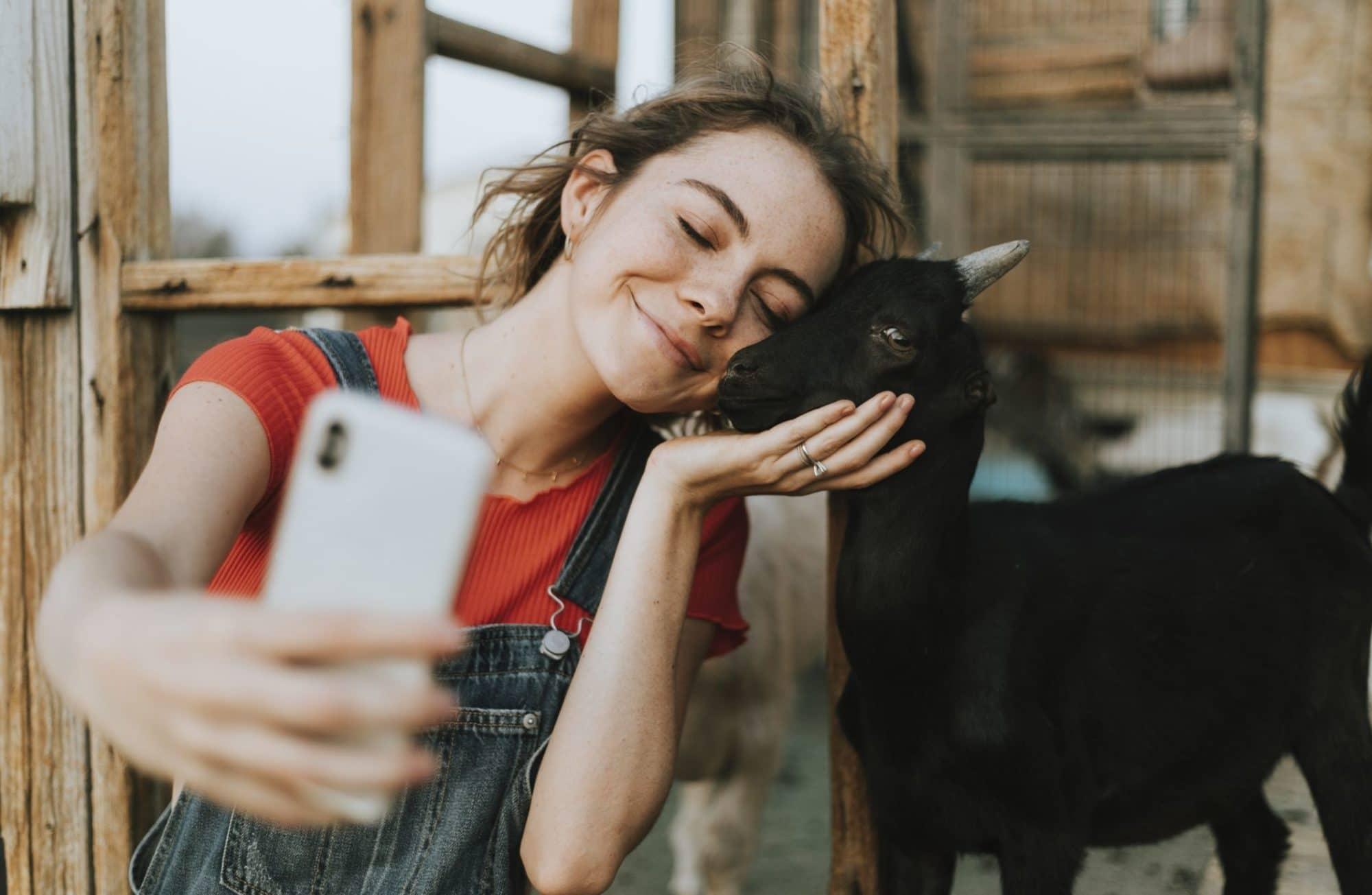 Top 5 des meilleurs animaux pour une mini-ferme